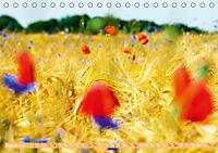 Das Jahr im Garten: Freude am Landleben (Tischkalender 2019 DIN A5 quer) - Produktdetailbild 8