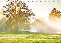 Das Jahr im Garten: Freude am Landleben (Tischkalender 2019 DIN A5 quer) - Produktdetailbild 4