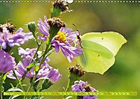Das Jahr im Garten: Freude am Landleben (Wandkalender 2019 DIN A3 quer) - Produktdetailbild 3