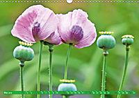 Das Jahr im Garten: Freude am Landleben (Wandkalender 2019 DIN A3 quer) - Produktdetailbild 5
