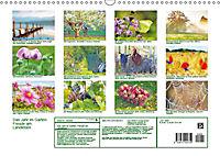 Das Jahr im Garten: Freude am Landleben (Wandkalender 2019 DIN A3 quer) - Produktdetailbild 13