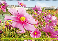 Das Jahr im Garten: Freude am Landleben (Wandkalender 2019 DIN A2 quer) - Produktdetailbild 9