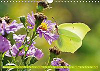 Das Jahr im Garten: Freude am Landleben (Wandkalender 2019 DIN A4 quer) - Produktdetailbild 3