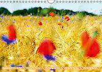 Das Jahr im Garten: Freude am Landleben (Wandkalender 2019 DIN A4 quer) - Produktdetailbild 8