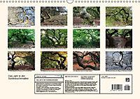 Das Jahr in der Süntelbuchenallee (Wandkalender 2019 DIN A3 quer) - Produktdetailbild 13