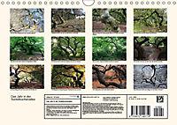 Das Jahr in der Süntelbuchenallee (Wandkalender 2019 DIN A4 quer) - Produktdetailbild 13