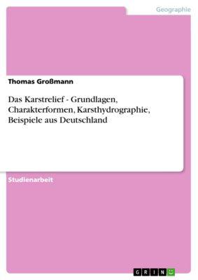 Das Karstrelief - Grundlagen, Charakterformen, Karsthydrographie, Beispiele aus Deutschland, Thomas Großmann