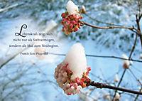 Das kleine Buch der guten Wünsche zur Weihnacht inkl. 8 Postkarten - Produktdetailbild 3