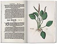 Das Kräuterbuch von 1543 - Produktdetailbild 2