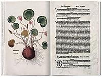 Das Kräuterbuch von 1543 - Produktdetailbild 5
