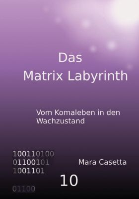 Das Matrix Labyrinth - Mara Casetta pdf epub