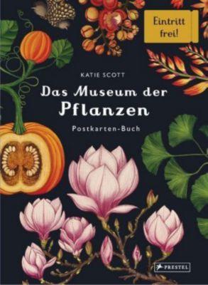 Das Museum der Pflanzen. Postkarten-Buch - Katie Scott |
