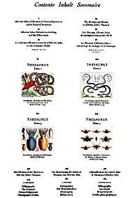 Das Naturalienkabinett - Produktdetailbild 3