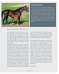 Das Pferdebuch - Produktdetailbild 5