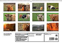 Das Schottische Hochlandrind (Wandkalender 2019 DIN A3 quer) - Produktdetailbild 13