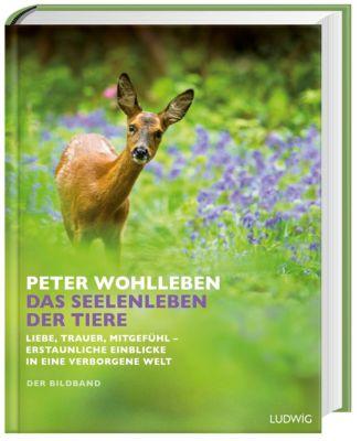 Das Seelenleben der Tiere - Peter Wohlleben |