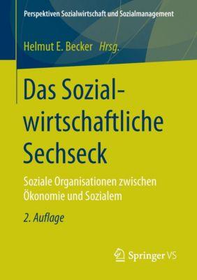 Das Sozialwirtschaftliche Sechseck -  pdf epub