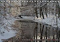 Das Steinfurter Bagno im Wandel der Jahreszeiten (Tischkalender 2019 DIN A5 quer) - Produktdetailbild 11