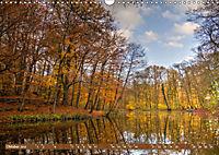 Das Steinfurter Bagno im Wandel der Jahreszeiten (Wandkalender 2019 DIN A3 quer) - Produktdetailbild 10