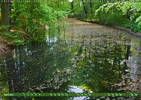 Das Steinfurter Bagno im Wandel der Jahreszeiten (Wandkalender 2019 DIN A2 quer) - Produktdetailbild 4