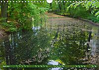 Das Steinfurter Bagno im Wandel der Jahreszeiten (Wandkalender 2019 DIN A4 quer) - Produktdetailbild 4