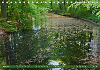 Das Steinfurter Bagno im Wandel der Jahreszeiten (Tischkalender 2019 DIN A5 quer) - Produktdetailbild 4