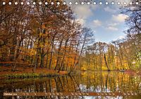 Das Steinfurter Bagno im Wandel der Jahreszeiten (Tischkalender 2019 DIN A5 quer) - Produktdetailbild 10