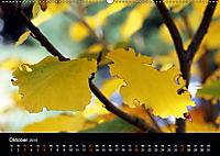 Das Ultental und seine Jahreszeiten (Wandkalender 2019 DIN A2 quer) - Produktdetailbild 10