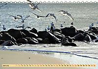 Das Wattenmeer - 2019 (Tischkalender 2019 DIN A5 quer) - Produktdetailbild 6