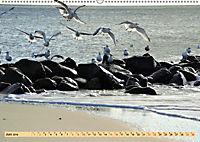 Das Wattenmeer - 2019 (Wandkalender 2019 DIN A2 quer) - Produktdetailbild 6