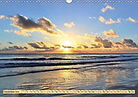 Das Wattenmeer - 2019 (Wandkalender 2019 DIN A3 quer) - Produktdetailbild 12
