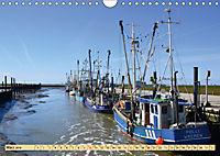 Das Wattenmeer - 2019 (Wandkalender 2019 DIN A4 quer) - Produktdetailbild 3
