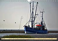 Das Wattenmeer - 2019 (Wandkalender 2019 DIN A4 quer) - Produktdetailbild 5
