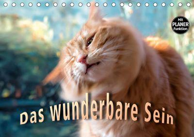 Das wunderbare Sein (Tischkalender 2019 DIN A5 quer), Viktor Gross