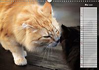 Das wunderbare Sein (Wandkalender 2019 DIN A3 quer) - Produktdetailbild 5