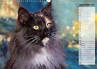 Das wunderbare Sein (Wandkalender 2019 DIN A3 quer) - Produktdetailbild 9
