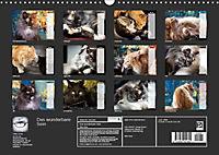 Das wunderbare Sein (Wandkalender 2019 DIN A3 quer) - Produktdetailbild 13