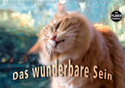 Das wunderbare Sein (Wandkalender 2019 DIN A4 quer), Viktor Gross