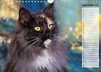 Das wunderbare Sein (Wandkalender 2019 DIN A4 quer) - Produktdetailbild 9