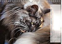 Das wunderbare Sein (Wandkalender 2019 DIN A4 quer) - Produktdetailbild 8