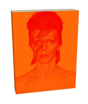 David Bowie Is (Deluxe edition)