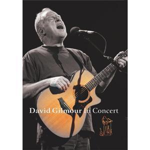 David Gilmour In Concert, David Gilmour