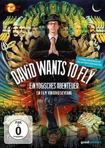 David Wants to Fly, Dokumentation