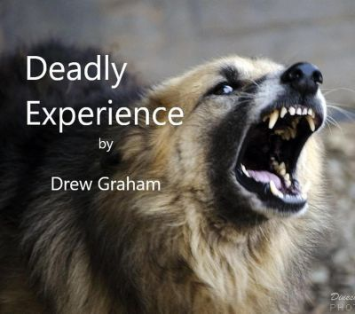 Deadly Experience, Drew Graham