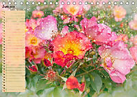 Deinen Geburtstag feiern wir heute! (Tischkalender 2019 DIN A5 quer) - Produktdetailbild 6