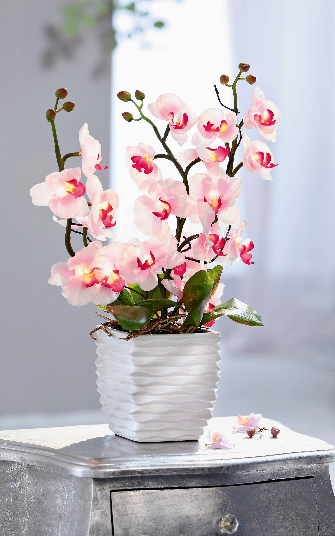 Deko Orchidee Mit Leds Jetzt Bei Weltbild At Bestellen