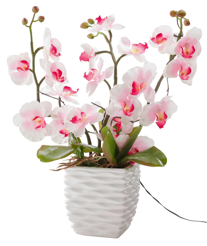 Deko Orchidee Mit Leds Jetzt Bei Weltbild De Bestellen