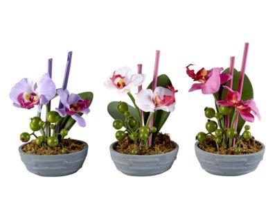 Kommentare zu deko orchideen mit led 3er set - Deko orchideen ...