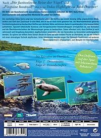 Delfine hautnah - Produktdetailbild 1