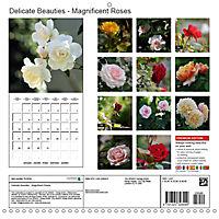 Delicate Beauties - Magnificent Roses (Wall Calendar 2019 300 × 300 mm Square) - Produktdetailbild 13